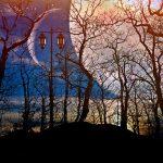 デボラ・シモンズ『魔性の花嫁』ディ・バラ家の物語(2)を読んだ感想