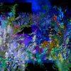 リサ・クレイパス『ひそやかな初夏の夜の』<壁の花シリーズ1>を読んだ感想