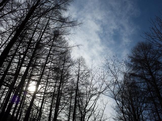 リサ・クレイパス『冬空に舞う堕天使と』<壁の花シリーズ3>を読んだ感想